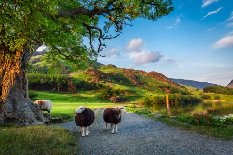 Lots to do in The Lake District