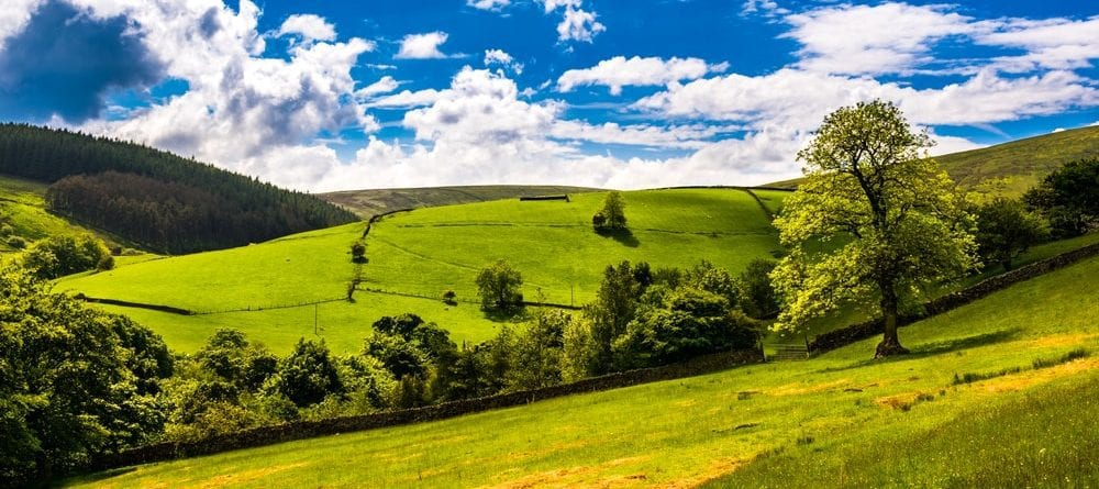 Family Days Out Around the Forest of Bowland