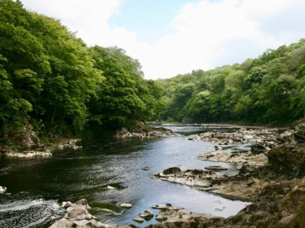 The Ribble River