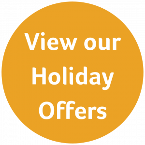 Holiday Offers Flash-min